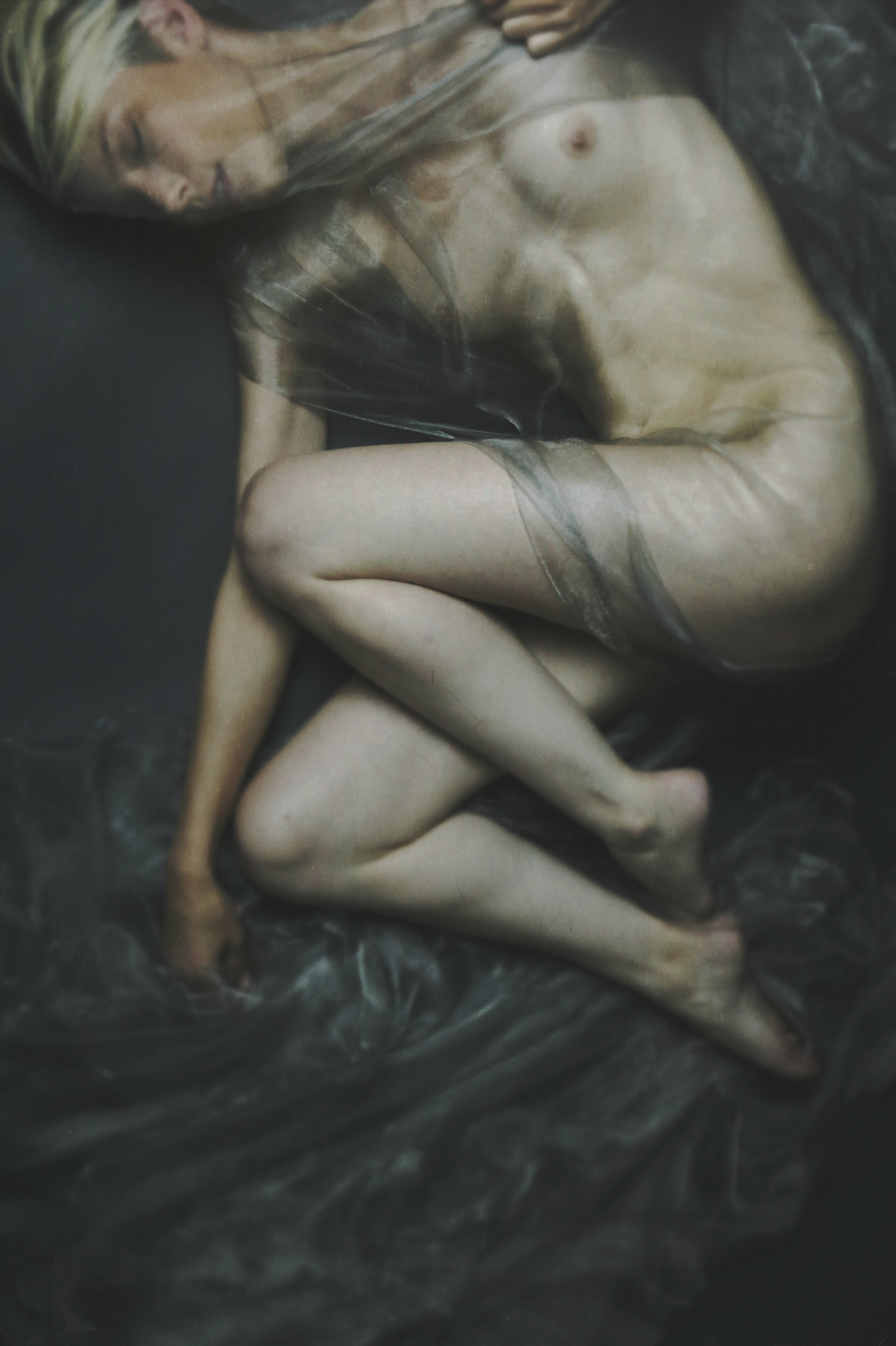 Josephine Cardin - In This Twilight