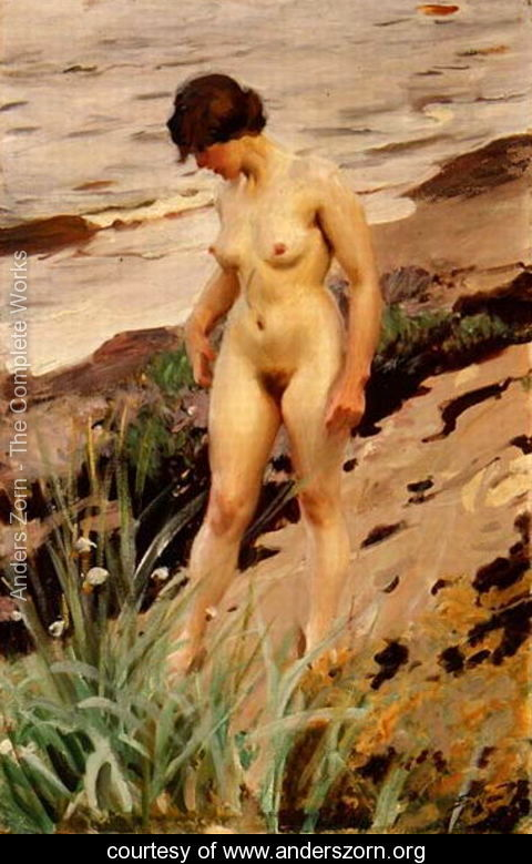 Nude by the Shore 1914 by Anders Zorn