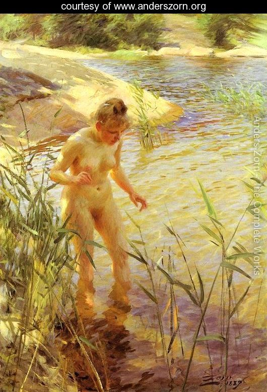 Reflections by Anders Zorn